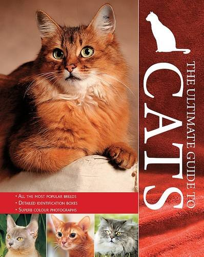 Encyclopedia: Cats